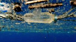 Вредный-вредный пластик