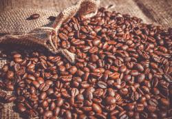 Кофе - польза или вред?