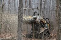 Битва лесорубов